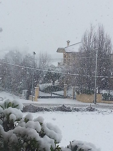 Neve a S.Mauro Pascoli 28/01/2014 by meteomike