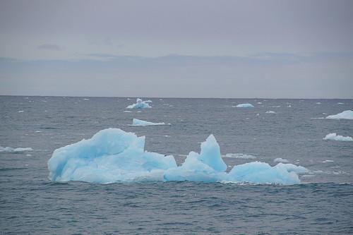 358 IJs in zee