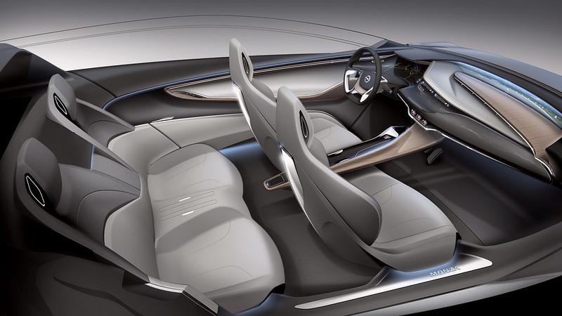 Massage Car Seat Inserts