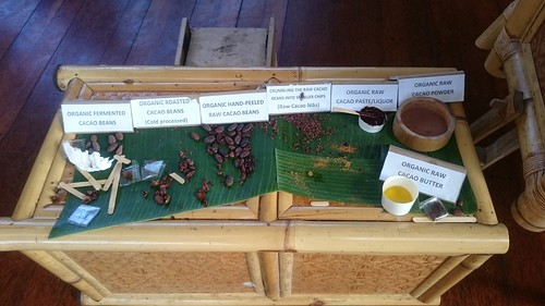 The various stages of Chocolate Processing