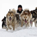 Sled dog race by My Planet Experience