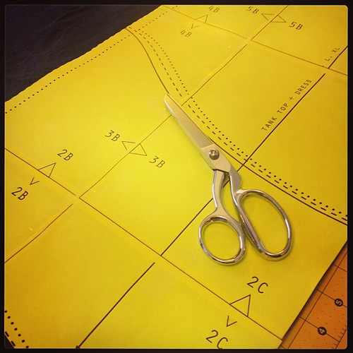 2:50pm. Shiny new shears. #adayinthelifephotochallenge