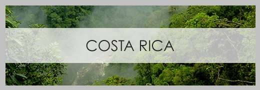 Costa Rica by Brooklyn Limestone