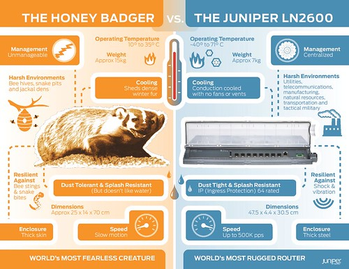 Juniper LN2600 vs. The Honey Badger