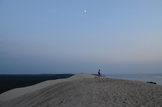 france_dune_du_pyla_duneofpilat_forest_and_ocean