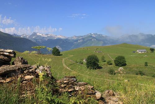 En vallée d'Ossau (Pyrénées)