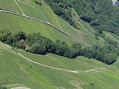 Uitzicht vanaf Chateau-Chalon {september 2013}