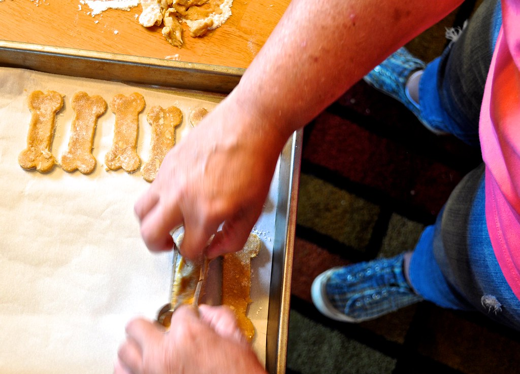 Dog Biscuit Project