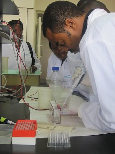 Ismail Mohamed loading DNA on gel at the BecA-Hub lab.