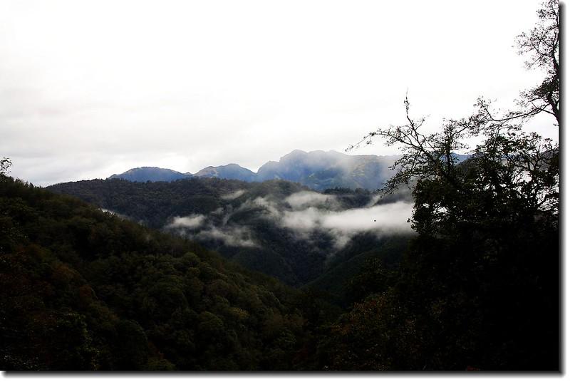 雪山山脈(710林道西望)