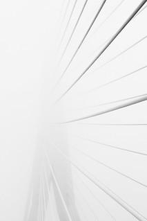 FV Flickr Top 5 (2-28), Eervolle Vermelding: Fog