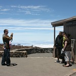 Rocco goes to work, elevation: 10,023 ft, Maui