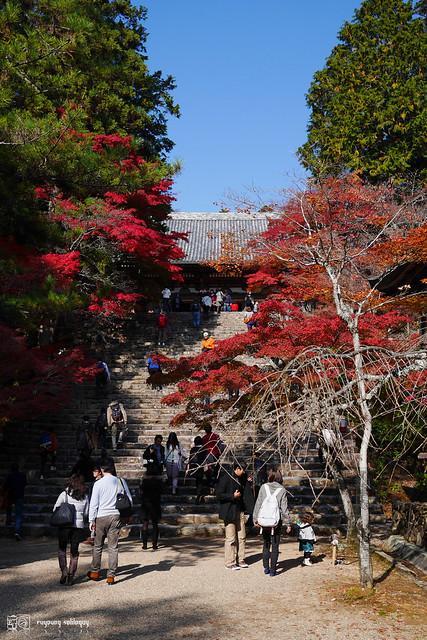 Panasonic_GX7_Kyoto_22