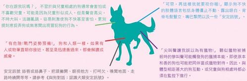 狗的身體語言。