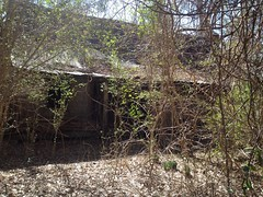 Ruins Near Caney Creek 2