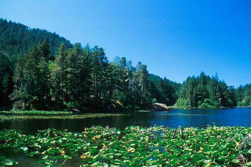 Matheson Lake Park, Sooke, Victoria, Vancouver Island, British Columbia, Canada