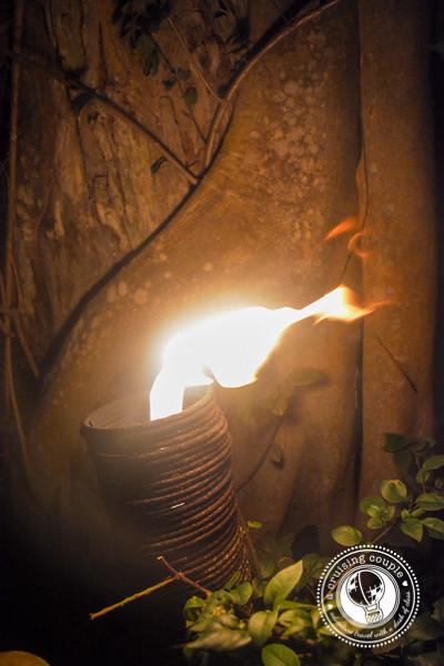 Rhythms of the Night Torch
