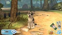 PlayStation Vita Pets — дата выхода и новые подробности