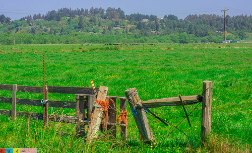 Fence On a Crancher Ranch