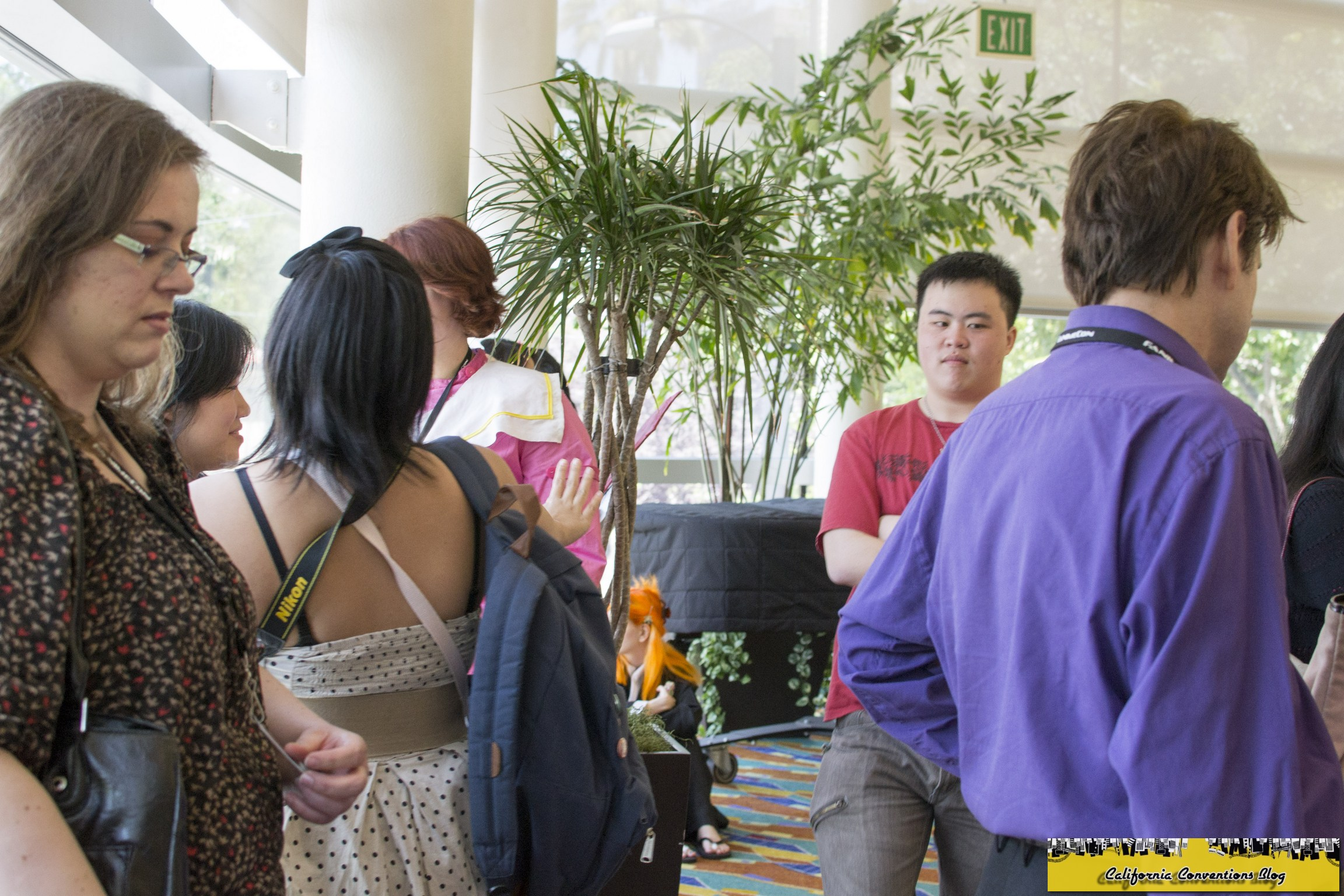 Fanime speed dating 2014