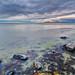 """rocky coast to a inland sea by Scott Stringham """"Rustling Leaf Design"""""""
