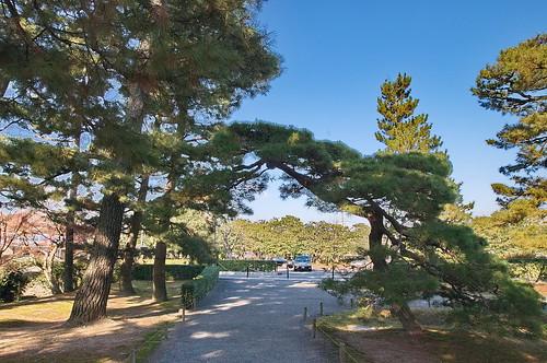【写真】2012 : 桂離宮/2020-08-31/IMGP8541