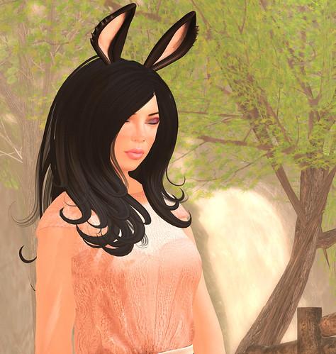 Dreamy Bunny