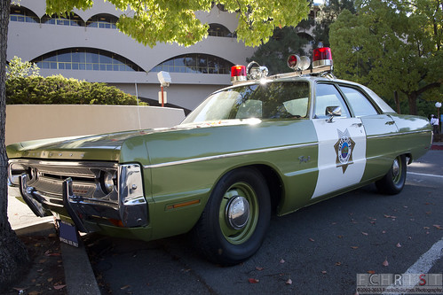 Shaded Green Police Cars
