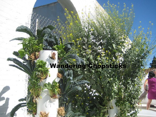 Rooftop Garden - Playa Restaurant - Los Angeles 13