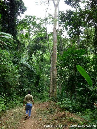 This is where we saw and heard the monkeys