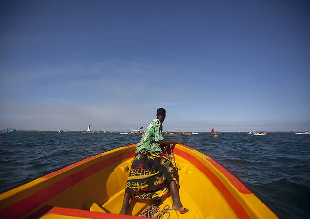 Man Watching The Dhow Race From Prow Of Observation Boat, Maulidi, Lamu Kenya