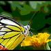 Snapshot 24 (29-06-2013 22-43)