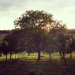 A la campagne - Photo of Doncourt-sur-Meuse