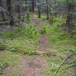 Sentier naturel