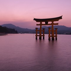 horizon, sea, evening, lake, body of water, reflection, morning, torii, dusk, sunset, sunrise,