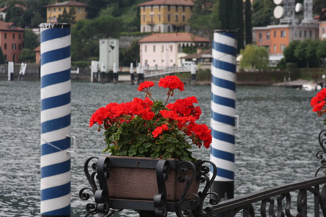 Lago di Como (71)