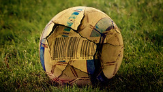 ball, grass, green, lawn, ball, football,