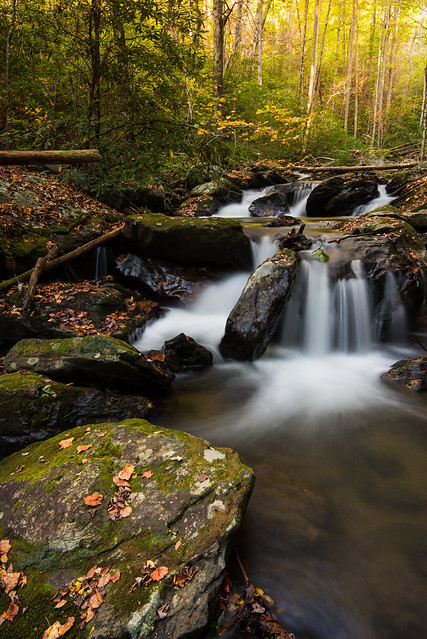 Longleaf.Photography - Smith Creek Falls