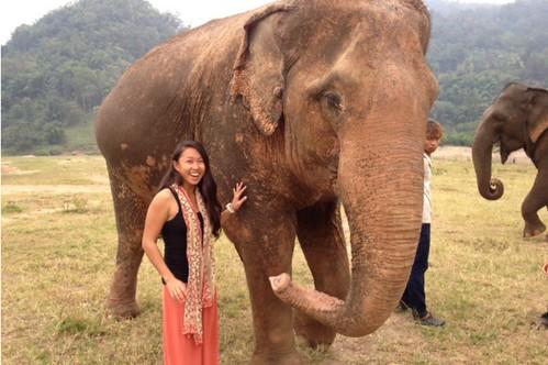 Elephant Nature Park 1