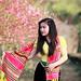 Thiếu nữ dân tộc bên rừng đào mùa xuân by Len Studio