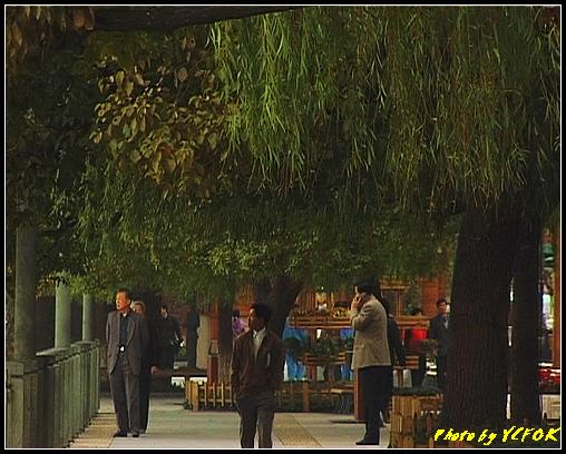 杭州 西湖 (其他景點) - 040 (湖濱路的湖畔)