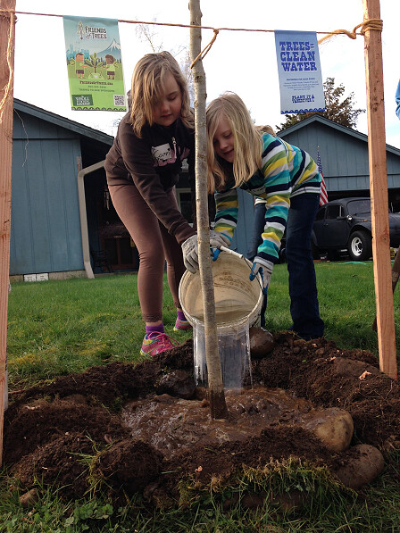 3.15.14 :: NE Vancouver Neighborhood Planting
