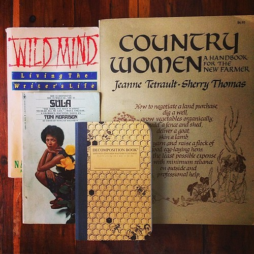 Bookstore treasures! These are my scores from Farewell Books today: Sula, by Toni Morrison - Wild Mind - Living the Writer's Life, by Natalie Goldberg - Country Women, a Handbook For the New Farmer by Jeanne Tetrault & Sherry Thomas. I'm feeling enthusias