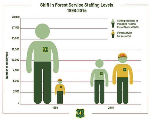 Shift in Forest Service Staffing Levels: 1998-2015 graphic