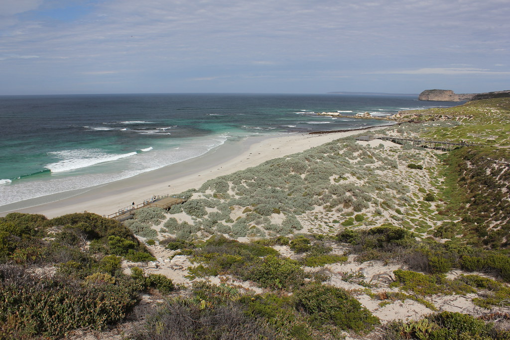 Seal Bay Conservation Park South Australia Tripcarta