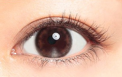 acorde_daily_basicbrown_eye02