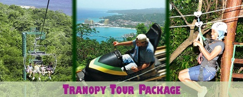 Jamaica Tranopy Tour Package