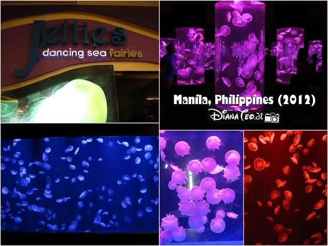 Day 5 - Philippines Manila Ocean Park 07