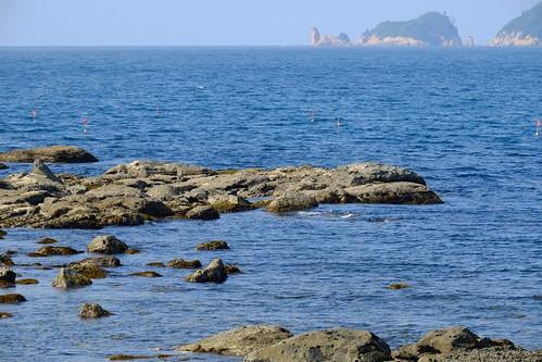 Oumijima Island and Fukagawa Bay, Nagato City (10)