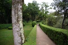 060-Jardins de Marqueyssac-048